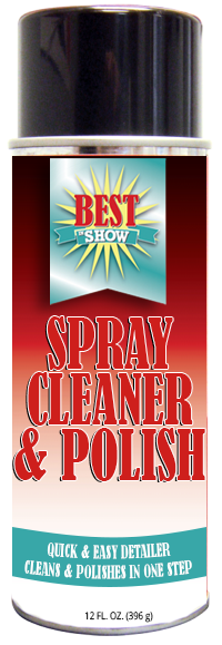 SPRAY-CLEANER